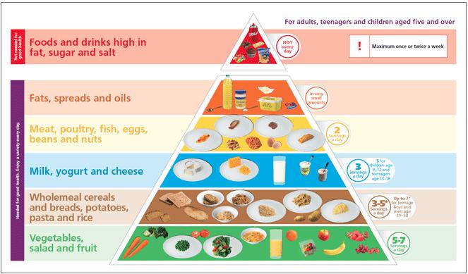 food piramid