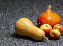 Pumpkin Apples Fruit Vegetables  - tommiesler / Pixabay