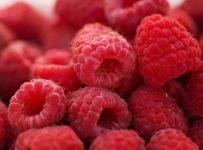 Raspberries Breakfast Summer Fruit  - JillWellington / Pixabay