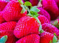 Strawberry Fruit Red Delicious  - pelephoto / Pixabay