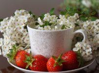 Strawberry Ripe Red  - Nowaja / Pixabay
